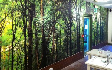 Wallpaper & Interior Displays